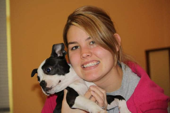 Preparing Your Home For Your New Boston Terrier. Boston Terrier Society.