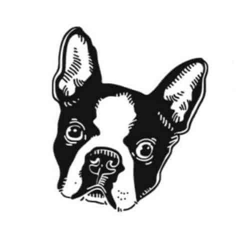 Boston Terrier Society Logo