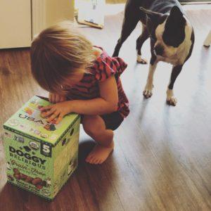 Recommended Dog Treats. Dog Treats. Boston Terrier Society.