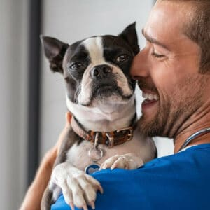 Boston Terrier Heart Murmurs: What You Need to Know