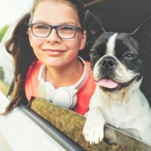Boston Terrier Rescues In Idaho - Cost & Adoption Process