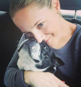Boston Terrier loving on her human