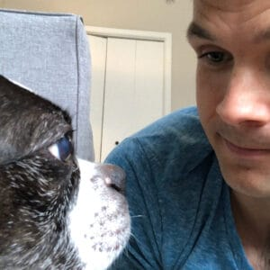 Stairing at a Boston Terrier worst mistake